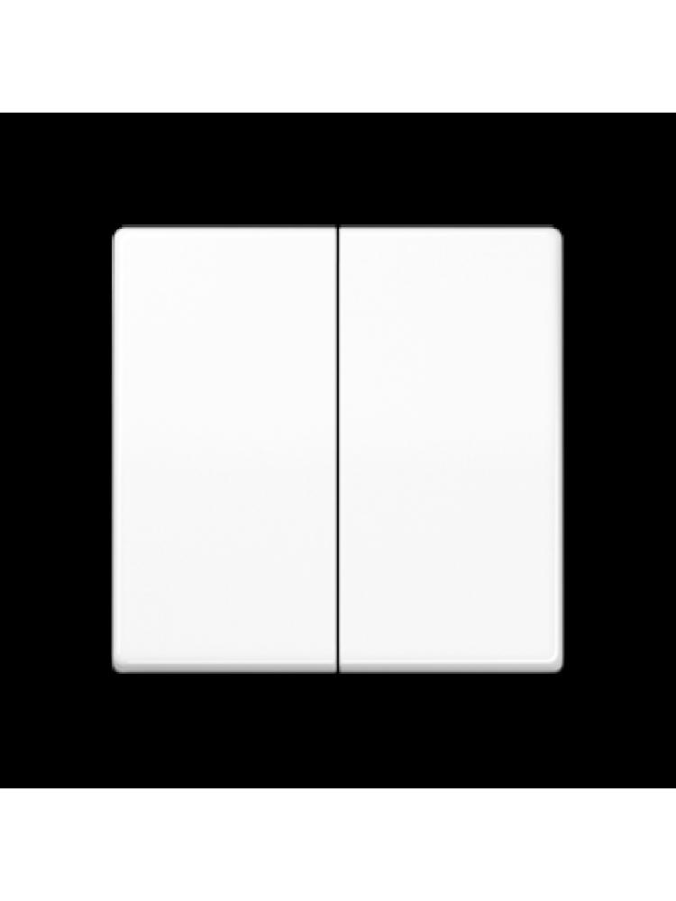 Dvipolis klavišas (AS591-5WW)