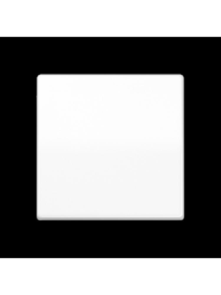 Vienpolis klavišas (AS591WW)
