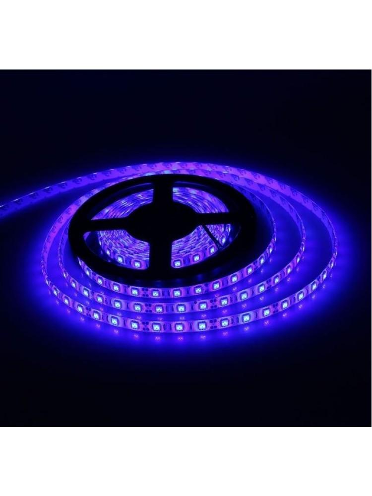 LED EKO 9,6W/m 12V mėlyna